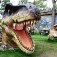 В Динопарке представлены 28 макетов динозавров в натуральную величину.