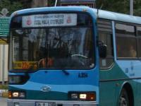 Для стамбульских автобусов откроют отдельные полосы в часы пик