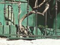 Обнаружено местонахождение могилы Ибрагим-паши