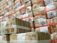 Правительство Турции может провести налоговую амнистию