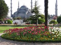 Летний Стамбульский торговый фестиваль