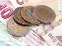 Инфляция в Турции в январе 2013 - 7.3 %