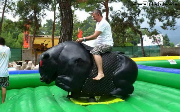 Можно покататься на диком быке.