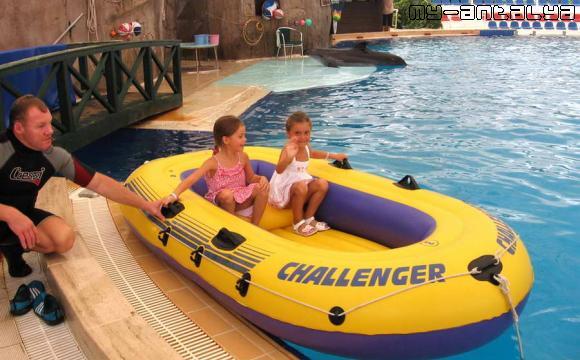 После шоу дельфины с удовольствием покатают детей в лодочке.