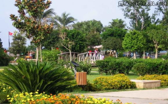 Вид на территорию парка.